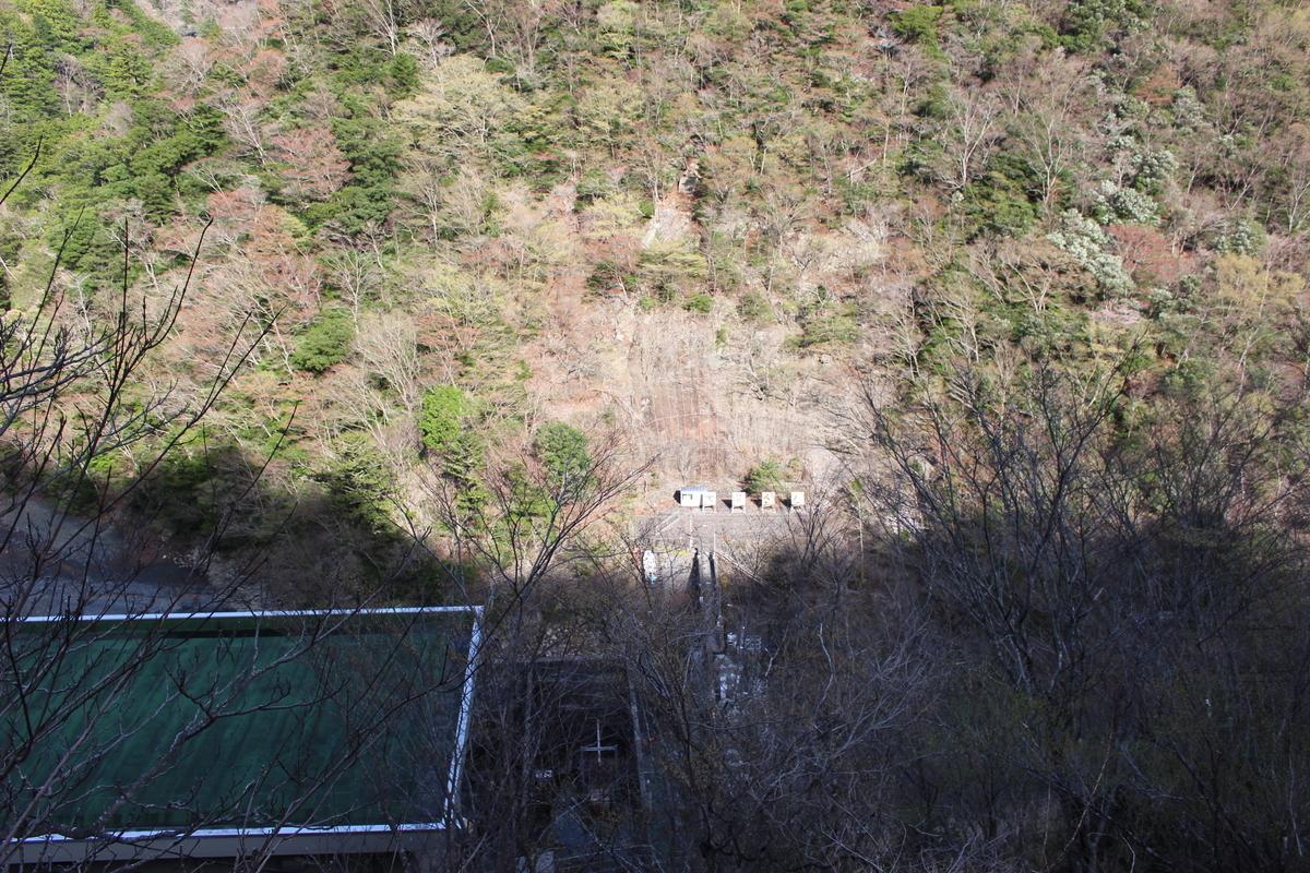f:id:okuchichibu551:20210418130549j:plain
