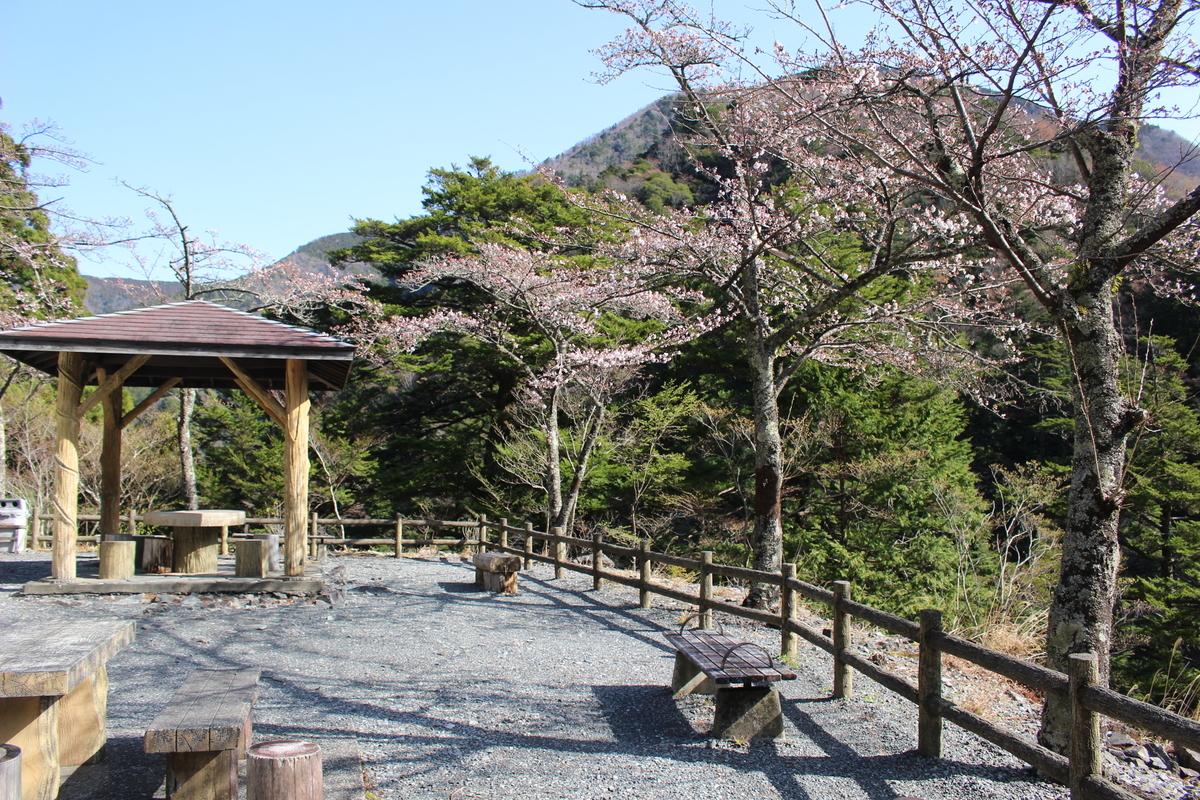 f:id:okuchichibu551:20210418160704j:plain