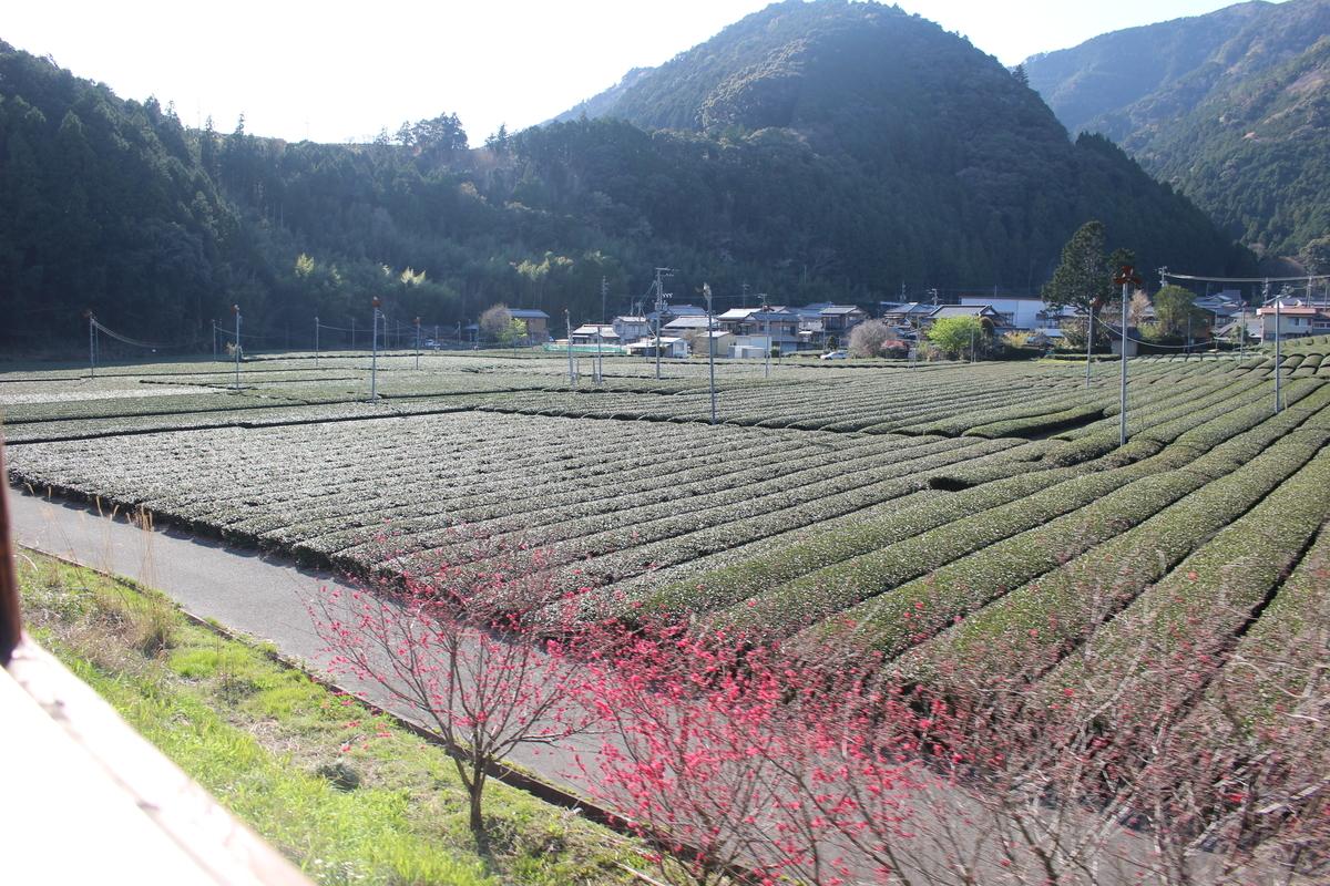 f:id:okuchichibu551:20210418191449j:plain