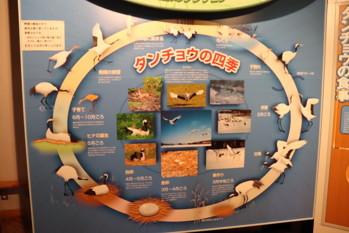f:id:okuchichibu551:20210523144424j:plain