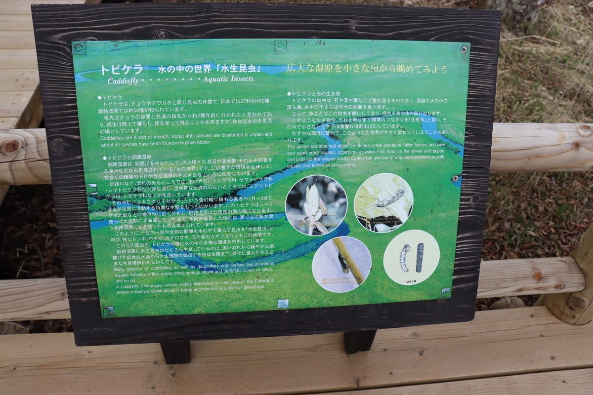 f:id:okuchichibu551:20210526233427j:plain