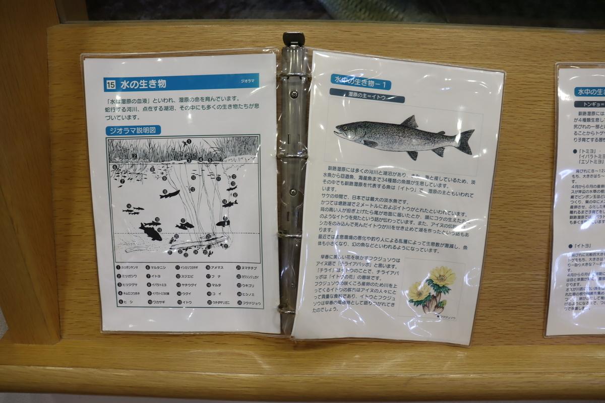 f:id:okuchichibu551:20210606173236j:plain