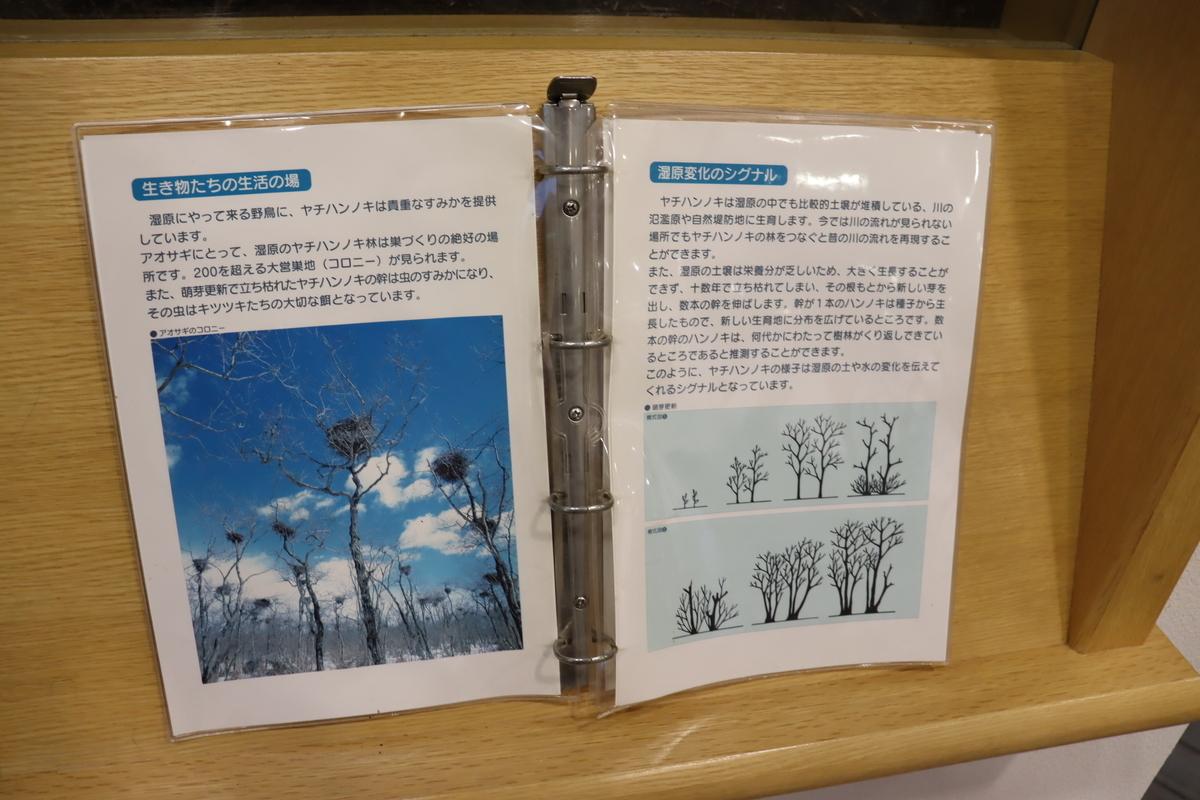 f:id:okuchichibu551:20210606181638j:plain
