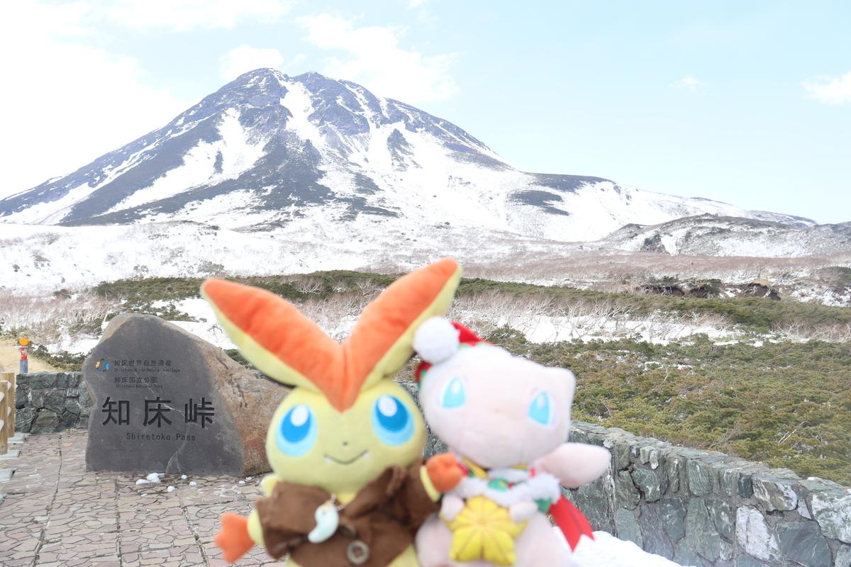 f:id:okuchichibu551:20210710205840j:plain