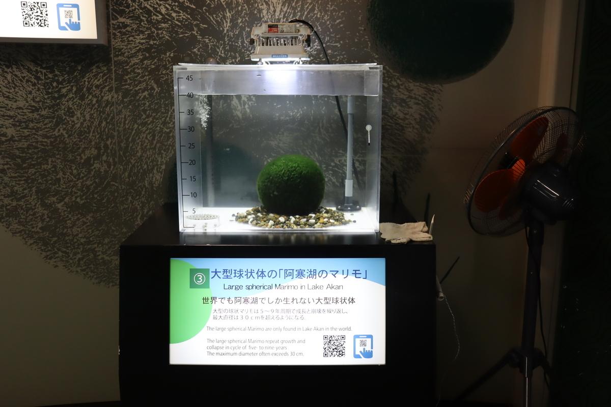 f:id:okuchichibu551:20210718112936j:plain