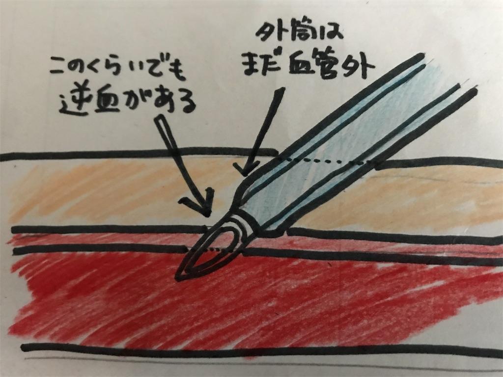 f:id:okudama-mo:20190427183710j:image