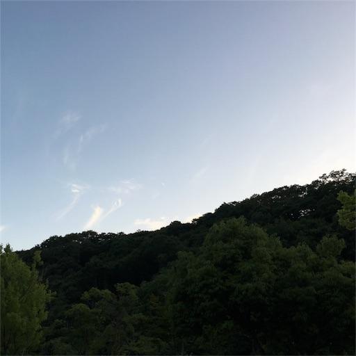 f:id:okumalu:20180627213816j:image