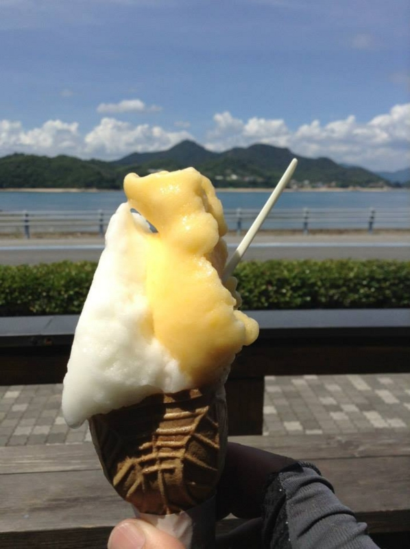 f:id:okunomasaaki:20160823210256j:image