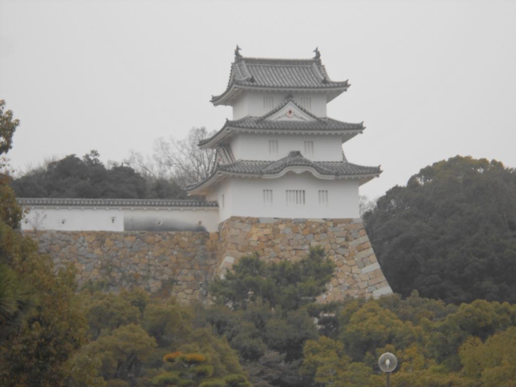 f:id:okuradesu:20160124163511j:plain