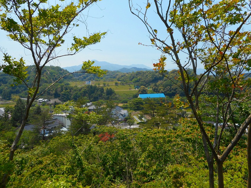 f:id:okuradesu:20160603153750j:plain