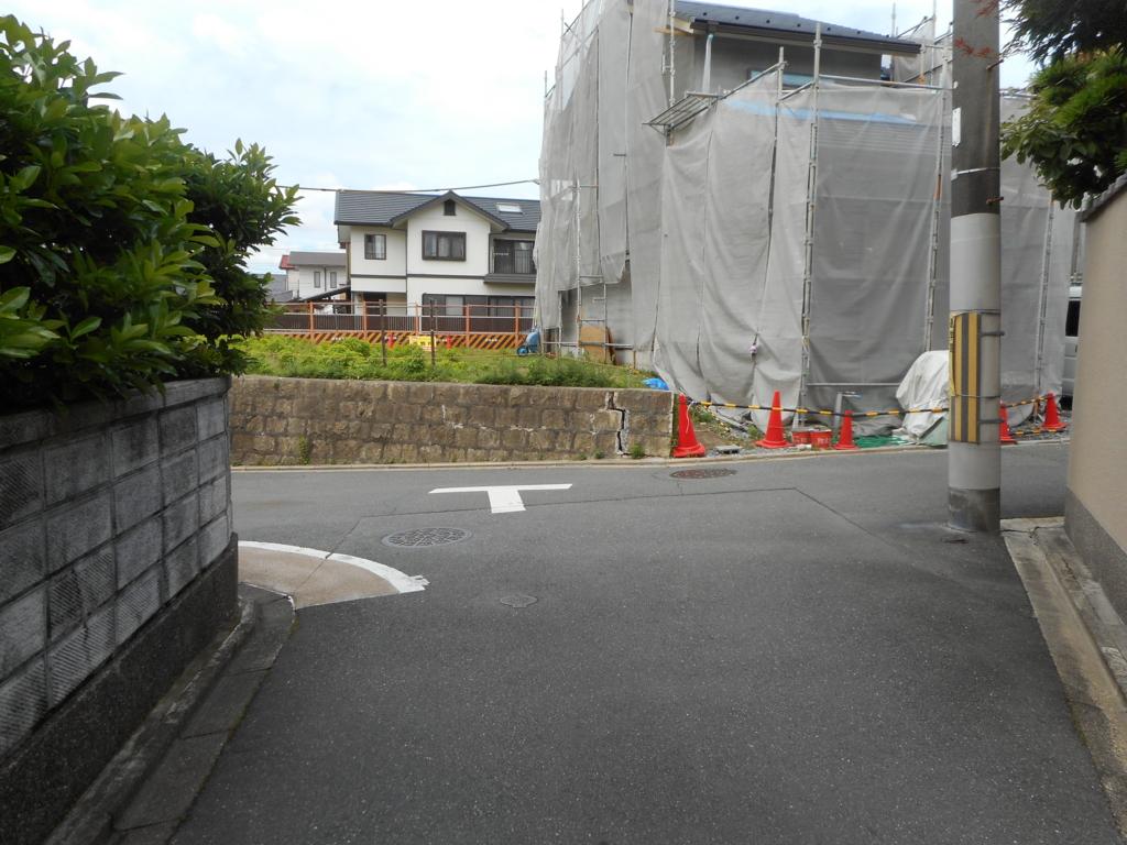 f:id:okuradesu:20160606153435j:plain