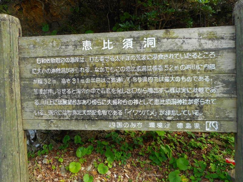 f:id:okuradesu:20160829141642j:plain