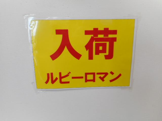 f:id:okuradesu:20160913170237j:plain
