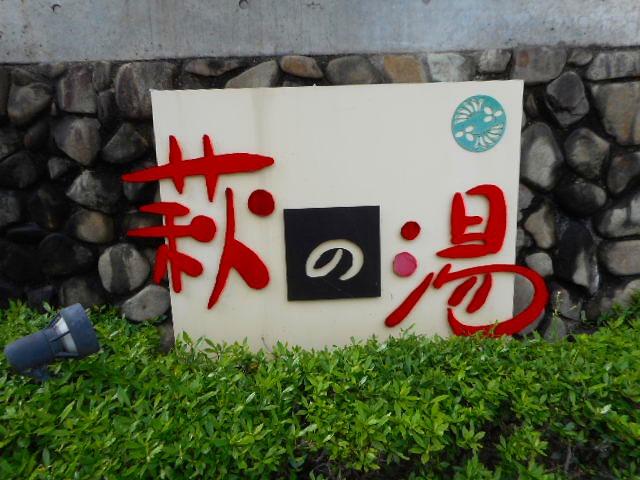 f:id:okuradesu:20161230020514j:plain