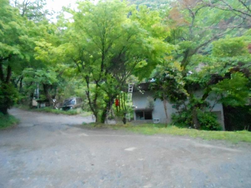 f:id:okuradesu:20170831145936j:plain