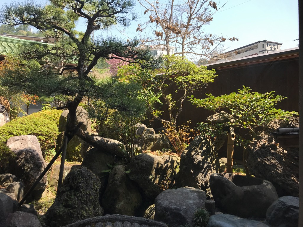 f:id:okuradesu:20180423155959j:plain