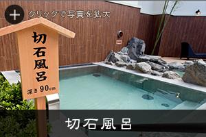 f:id:okuradesu:20180920161426j:plain