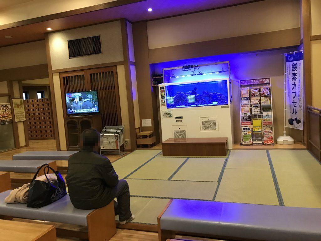 f:id:okuradesu:20190112233217j:plain