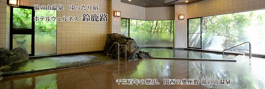 f:id:okuradesu:20190211022752j:plain