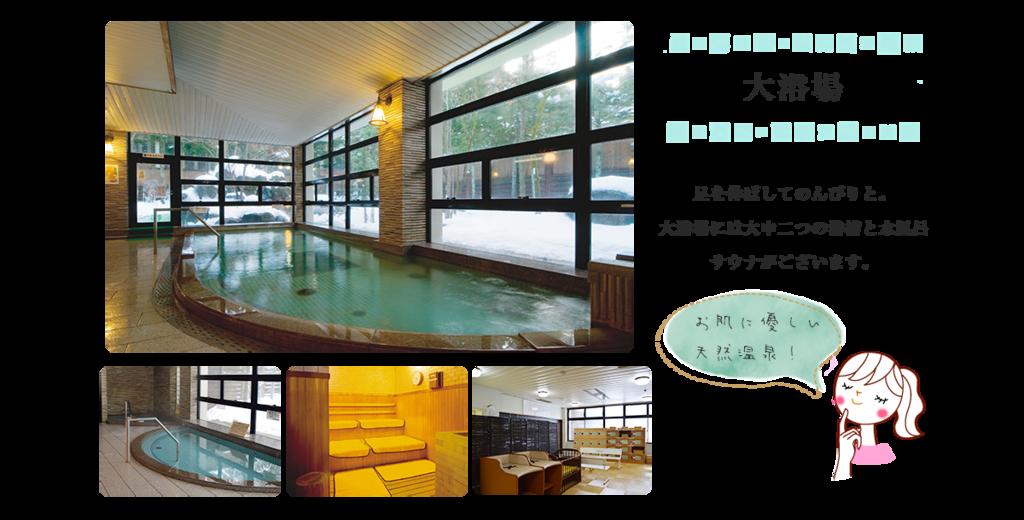 f:id:okuradesu:20190308145736p:plain