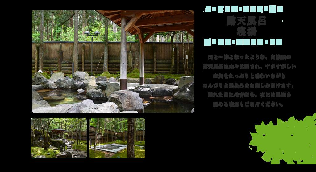f:id:okuradesu:20190308145739p:plain