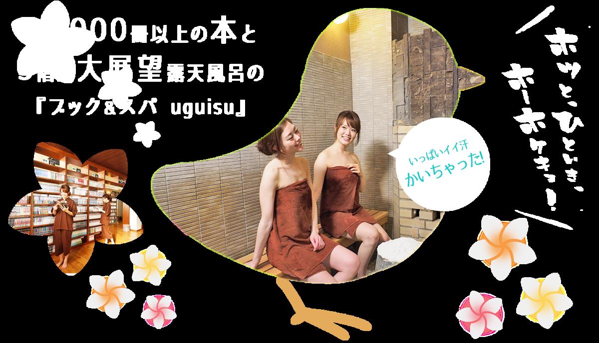 f:id:okuradesu:20190602032911p:plain