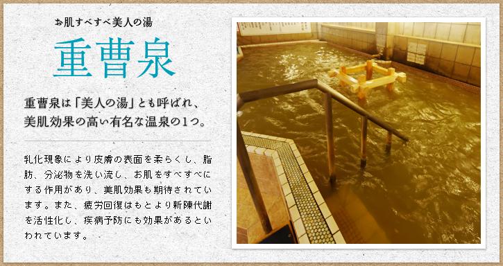 f:id:okuradesu:20190609143935j:plain