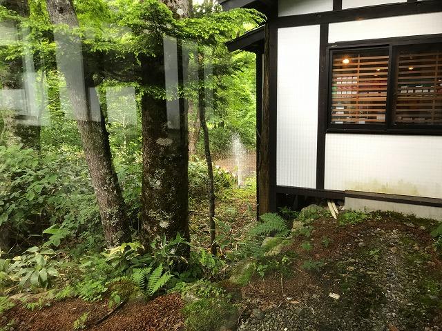 f:id:okuradesu:20190704032726j:plain