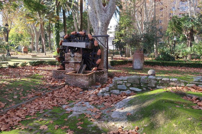 アルヘシラスの公園