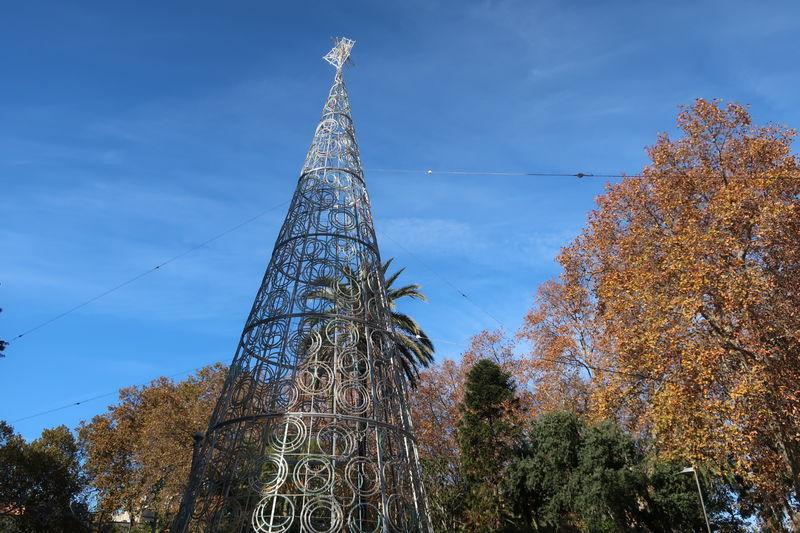 アルヘシラスのクリスマスツリー