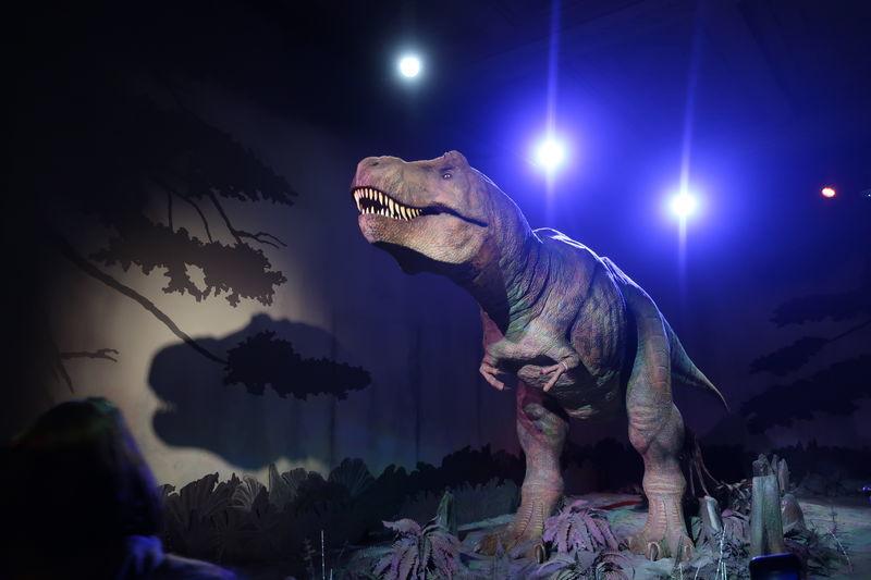 自然史博物館恐竜