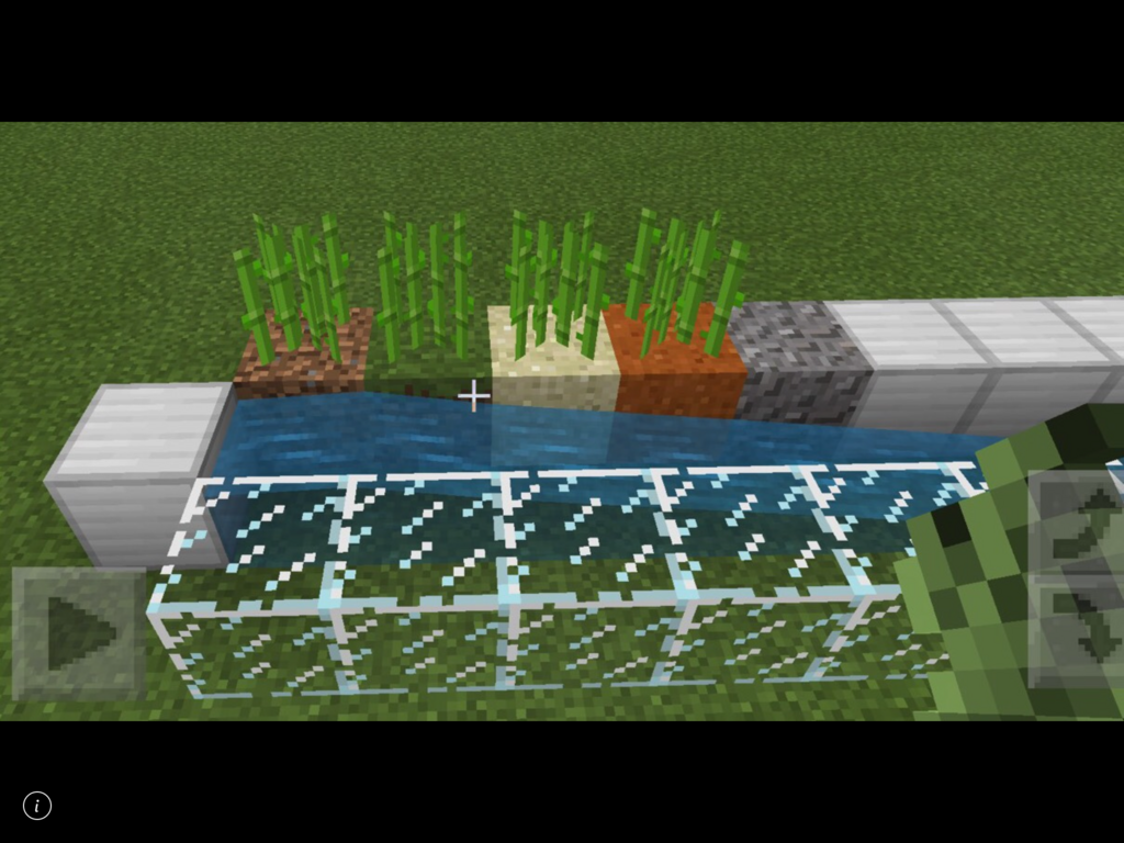 マイクラ サトウキビ 畑