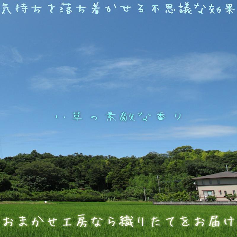 f:id:omakase_factory:20190311074950j:plain