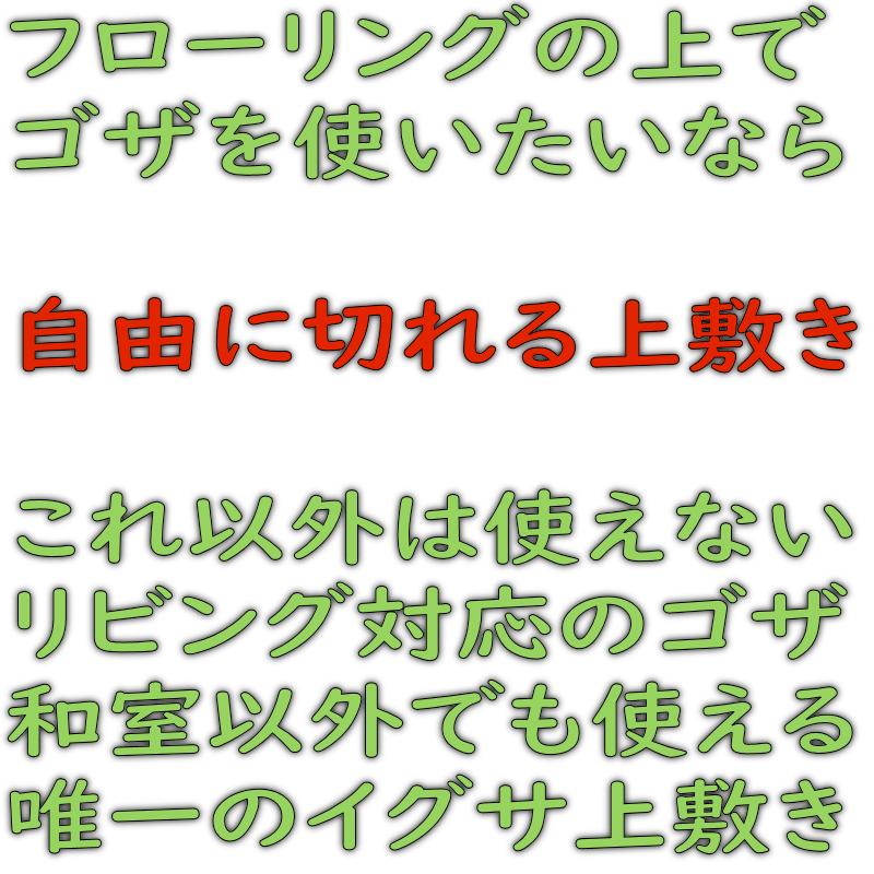 f:id:omakase_factory:20200525063355j:plain