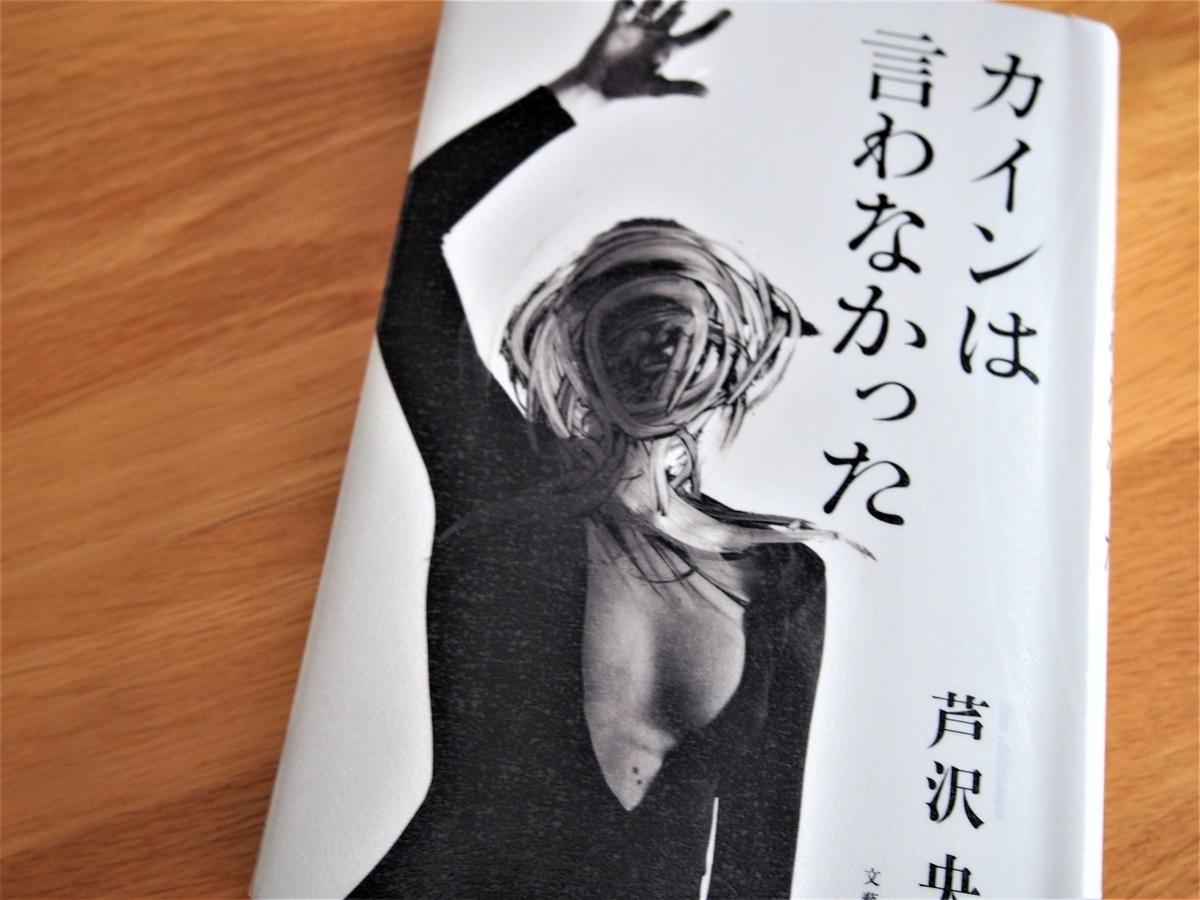 芦沢央著「カインは言わなかった」の表紙