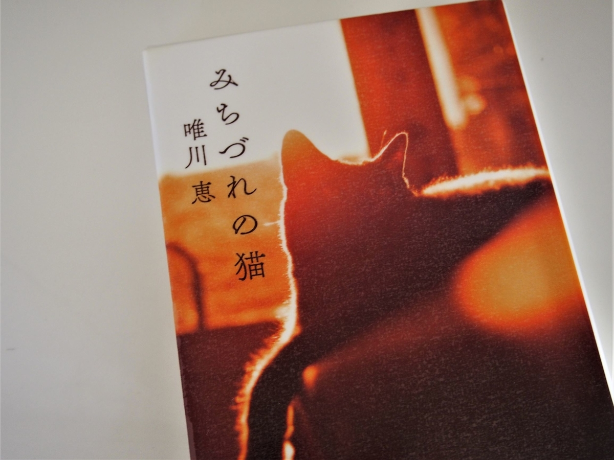 唯川恵「みちづれの猫」猫の写真