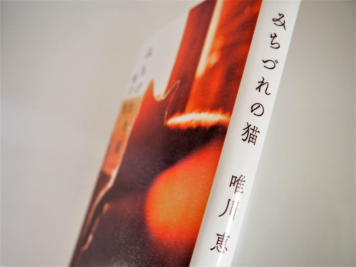 唯川恵著「みちづれの猫」の表紙画像
