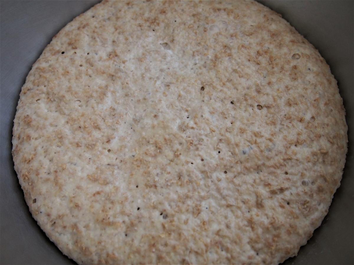 小麦ふすま入りのパン生地・発酵後