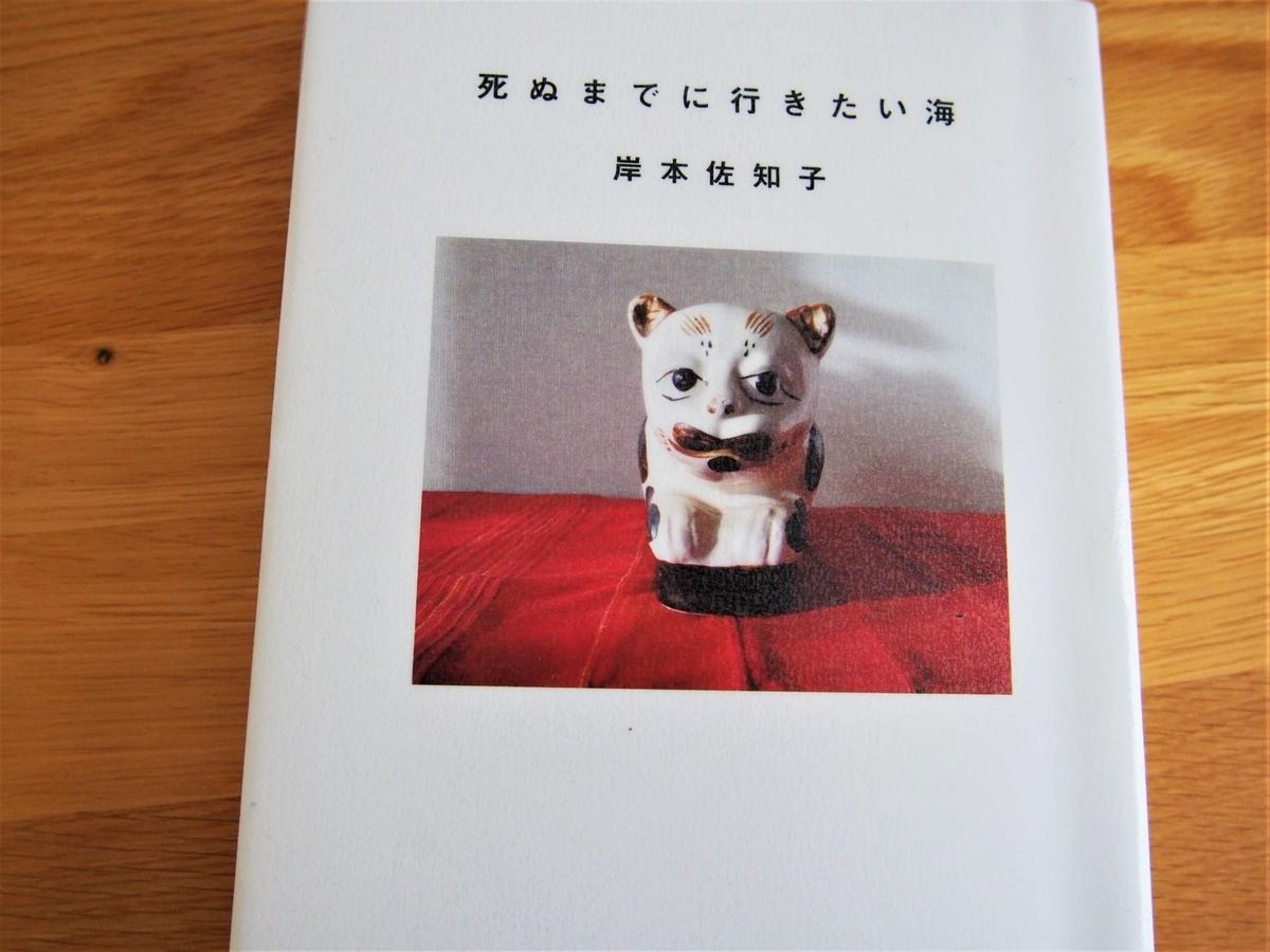 岸本佐知子「死ぬまでに行きたい海」の表紙画像