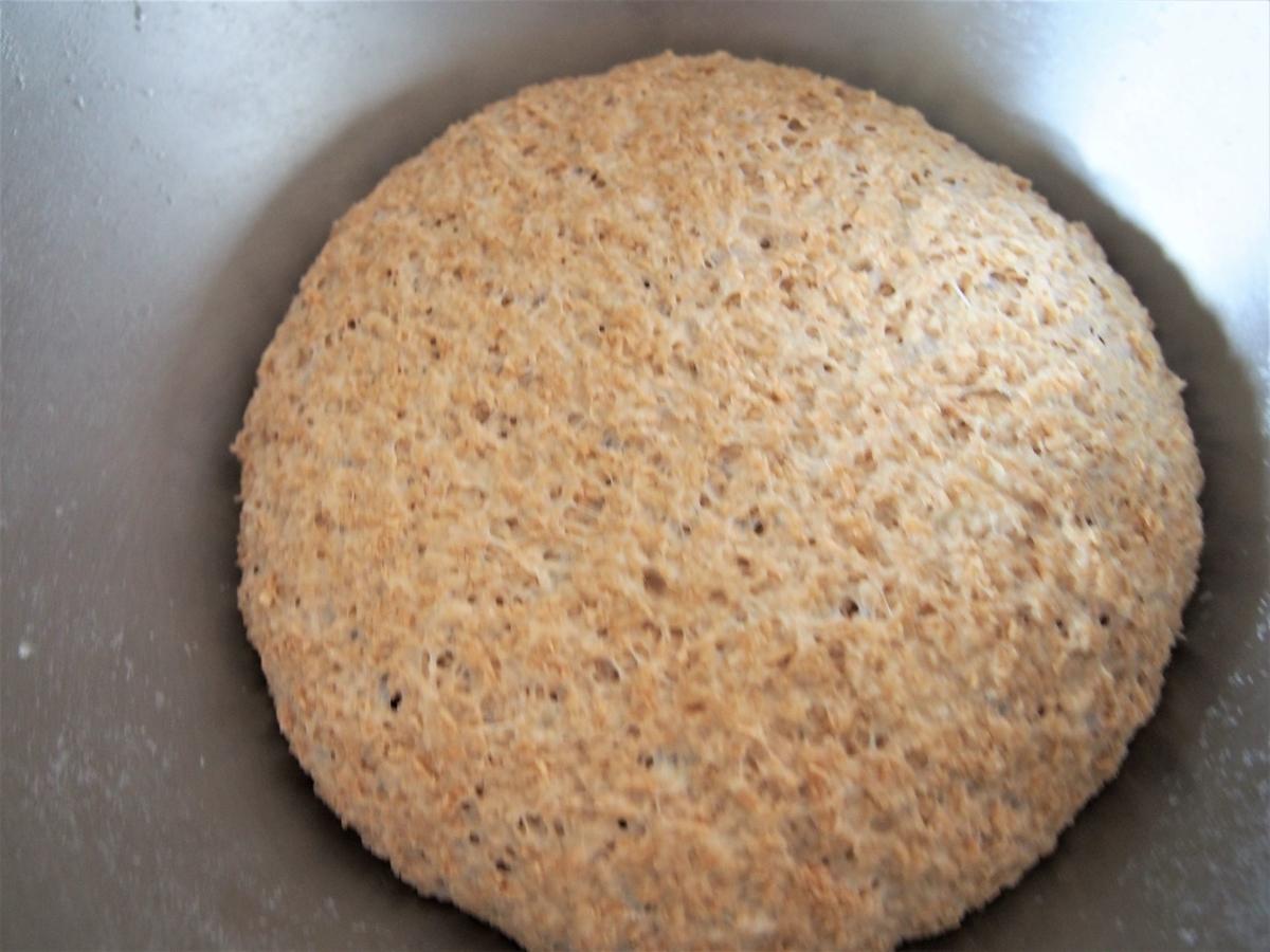 スペルト小麦とふすまのパン生地・一次発酵完了