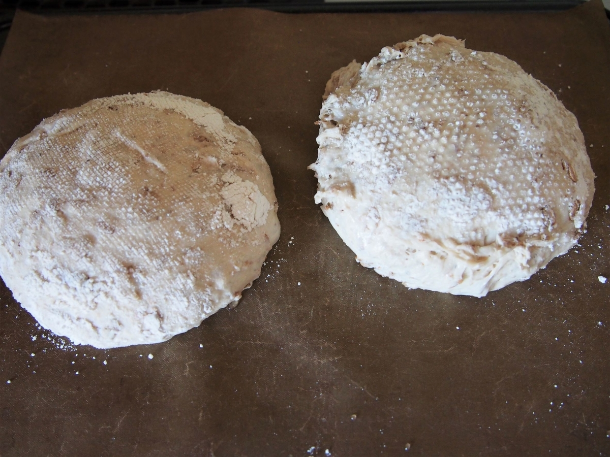 二次発酵後のカンパーニュ生地を天板に乗せる