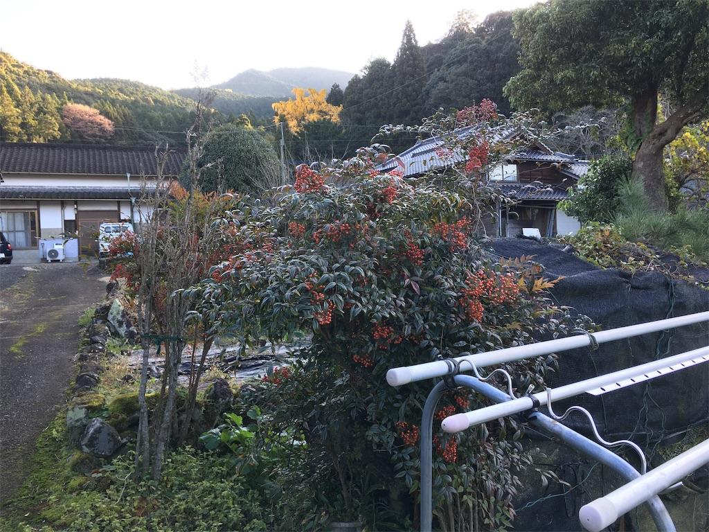 f:id:omiitootamadaisuki:20191201174520j:image