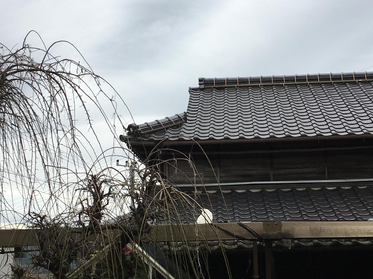 f:id:omiitootamadaisuki:20191207212740j:plain