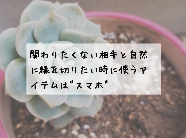 f:id:omitsublog:20190427231623j:image