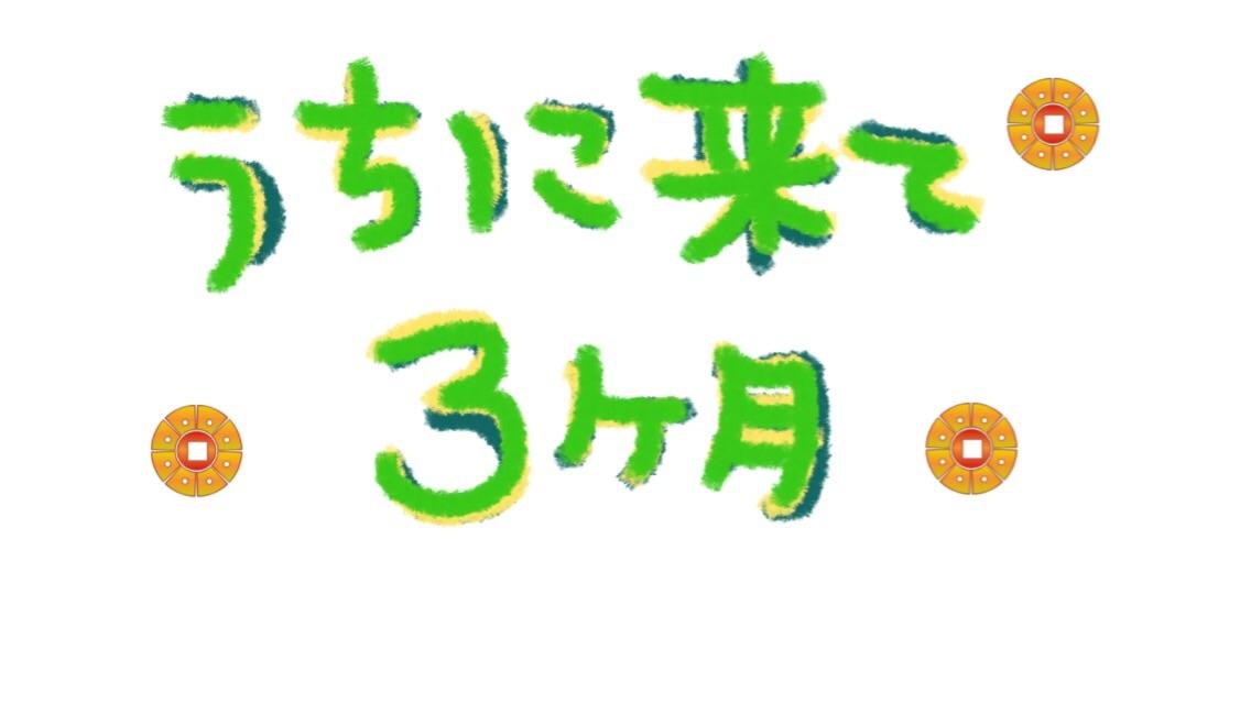 f:id:omochichanwaka104:20170818030054j:image