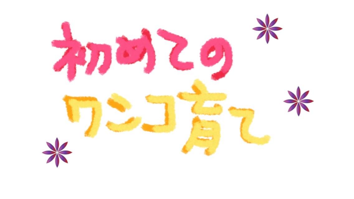 f:id:omochichanwaka104:20170818030124j:image