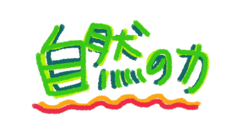 f:id:omochichanwaka104:20171025045518j:image