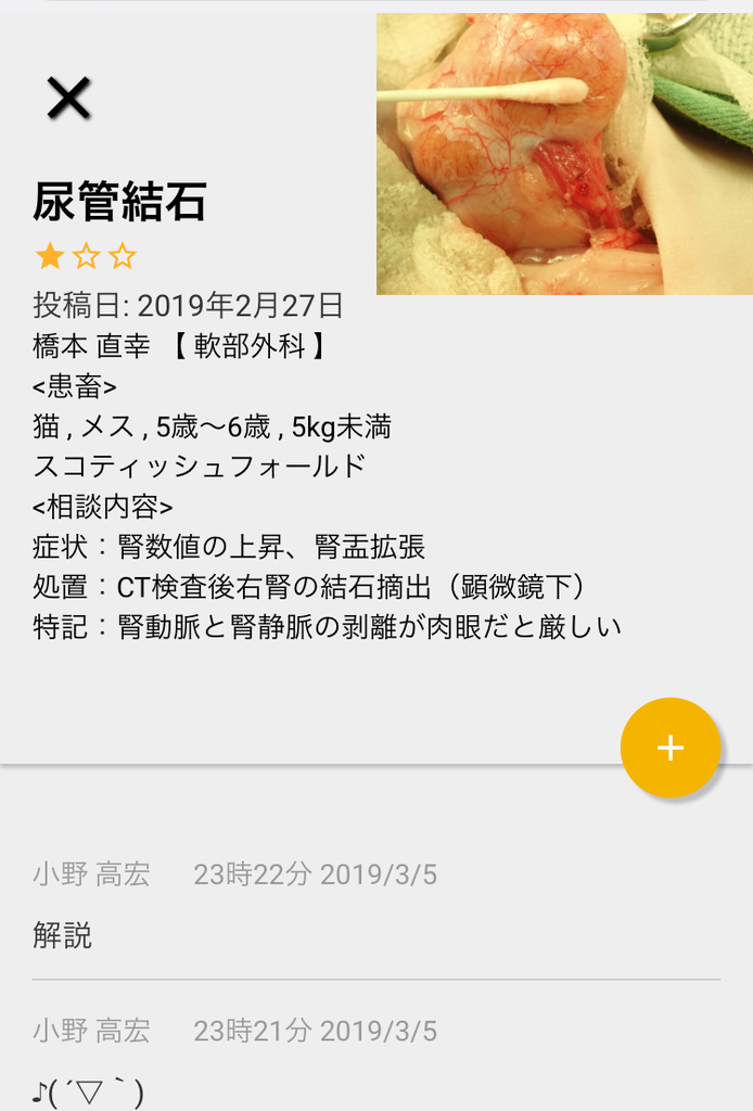 f:id:omoi-inc:20190313164422j:plain