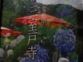 京都新聞写真コンテスト 紅傘映して