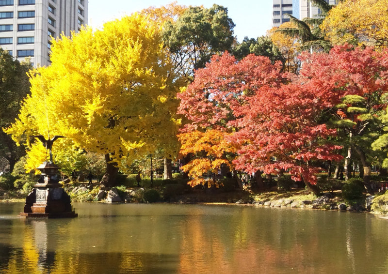 f:id:omronaruku88:20121127235137j:image:w640